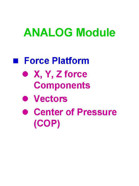 Slide3.JPG (49024 bytes)
